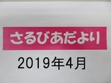 2019.4月活動報告